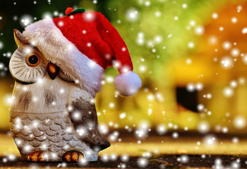 Karácsonyi bagoly