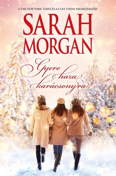 Gyere haza karácsonyra! - könyvborító
